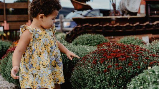 Giardino a misura di bambino: divertimento in sicurezza